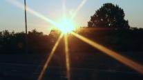 sunburrst